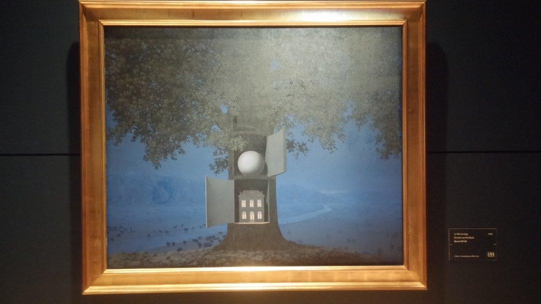magritte-arbol-luz