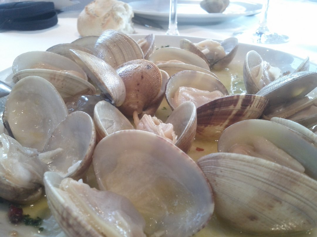 Almejas - Restaurante Hondartzape (Gorliz)