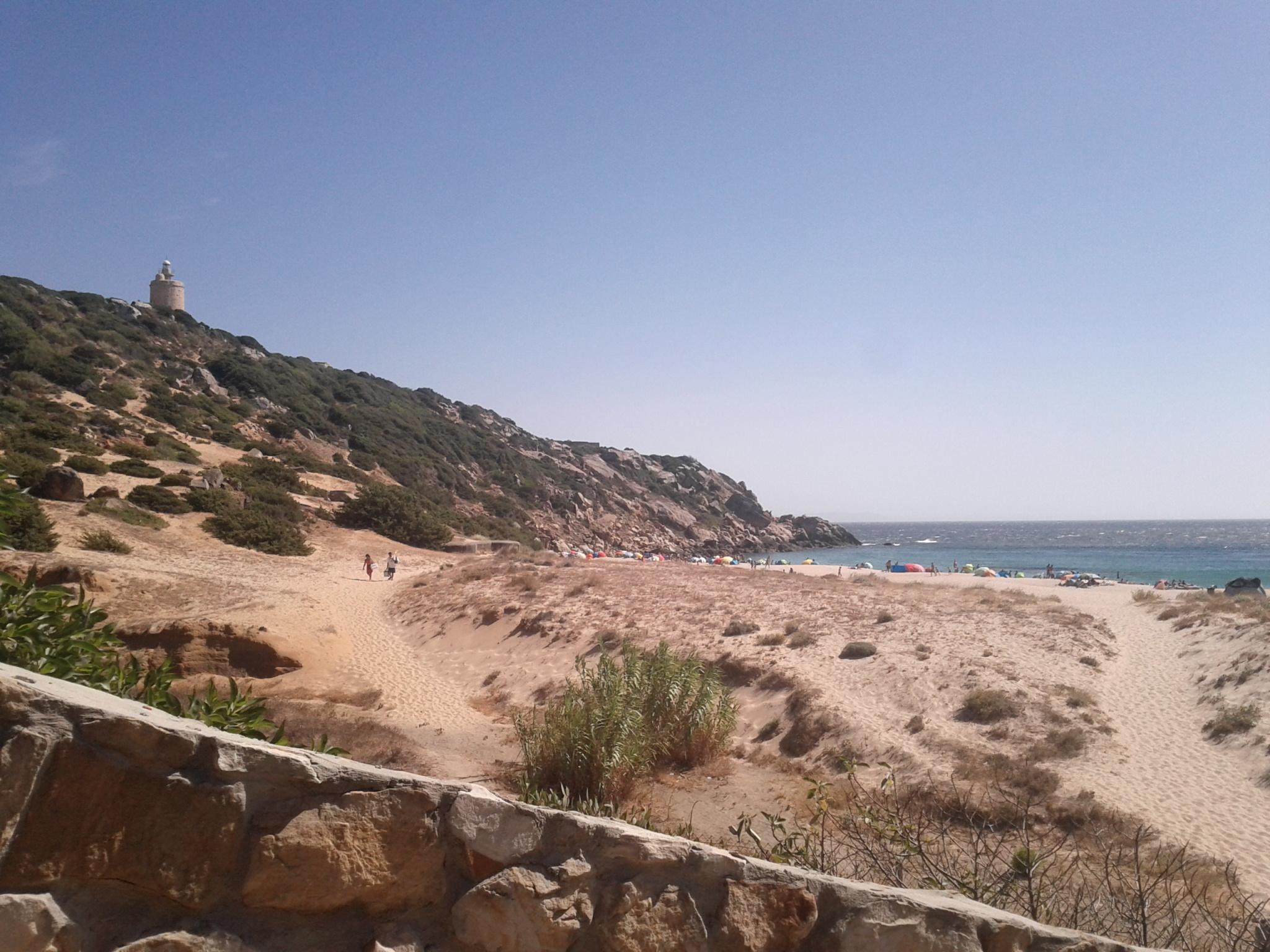 Zahara de los Atunes: foto de la Playa de los Alemanes y sombrillas murallita